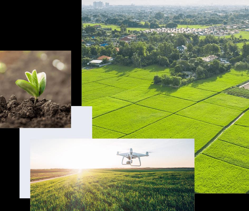 Farmland Images